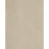 Vanguard Marfil Tiles 55x33cm
